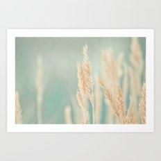 Magical Field Art Print