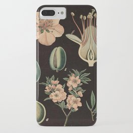 Botanical Almond iPhone Case