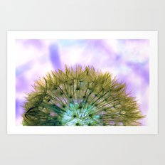 Dandelion Sunrise Art Print