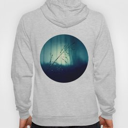 Blue Willow in the rain Hoody