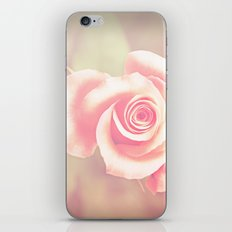 candy rose iPhone & iPod Skin