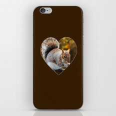Squirrel nutkin iPhone & iPod Skin