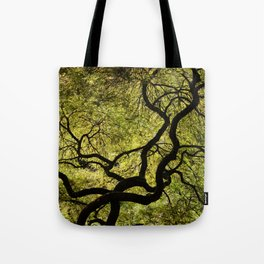 Japanese Maple Tree Tote Bag