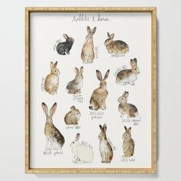 Rabbits & Hares Serving Tray