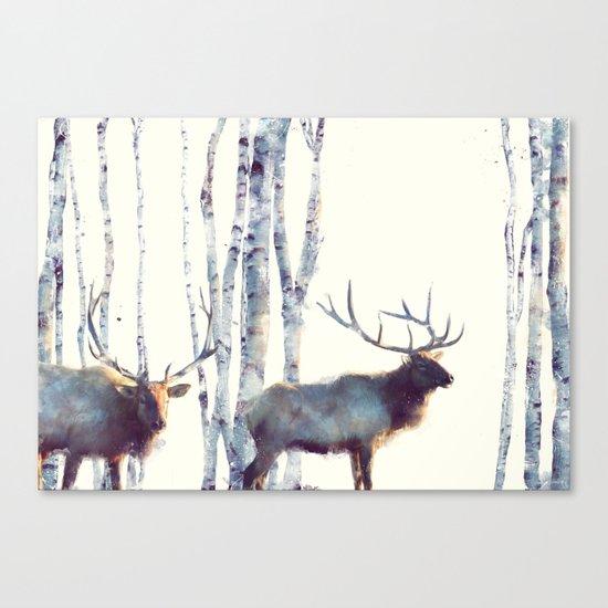 Elk // Follow Canvas Print