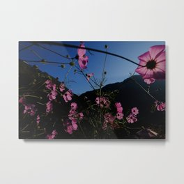 Flowers and a fishtail Metal Print