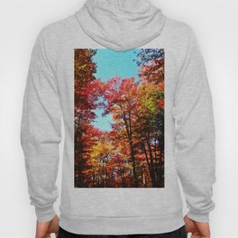 Fall Forest Delight Hoody