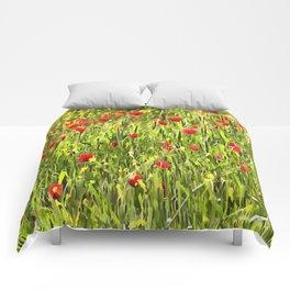 Flanders Poppies Comforters