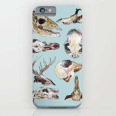 Skulls iPhone 6 Slim Case