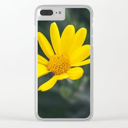 May flowers III Clear iPhone Case
