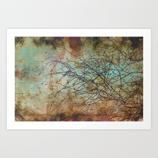 For the love of trees - textured photography Art Print