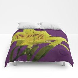 Flores amarillas Hemerocallis del campo Comforters