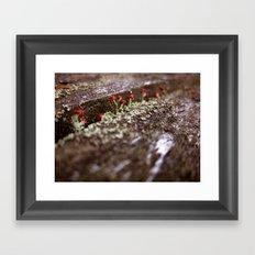 Martian Moss Framed Art Print