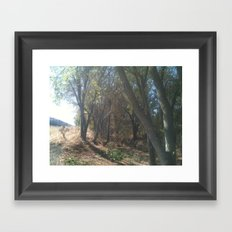 In the shadow Framed Art Print