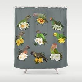 Poicephalus Parrots Shower Curtain