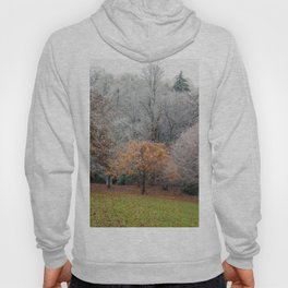 Autumn Meets Winter in the grass meadow. Hoody