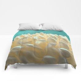 Cristina Comforters