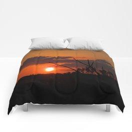 The Beautiful Sunset Comforters