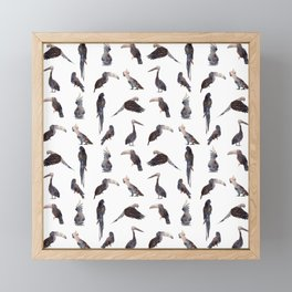 Tropical Birds Pattern Framed Mini Art Print