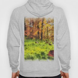 forest floor Hoody