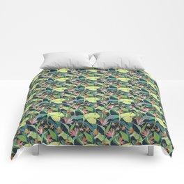Tropical Bird of Paradise Comforters