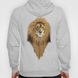 LION - Aslan Hoody