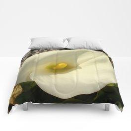 Single Cream White Calla Lily With Garden Background Comforters