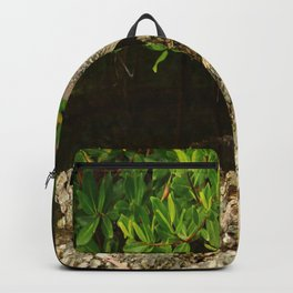 Love Crabs For Lunch Backpack