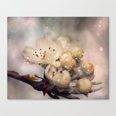 Springtime galaxy Canvas Print