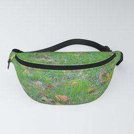 Curiosity of Youth Fanny Pack