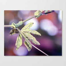 Trapped in an Autumn dream Canvas Print