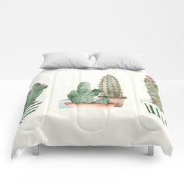 Cactus Grouping Flowering Cacti Comforters