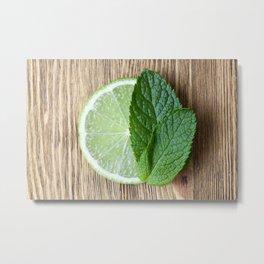 Lime and mint Metal Print