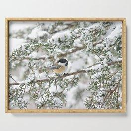 Snowstorm Chickadee Serving Tray