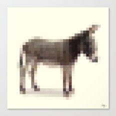 Censored Donkey Canvas Print