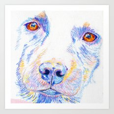 Lotte, the rescue dog Art Print
