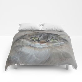 Tabby cat Maine Coon portrait Pastel drawing on the grey background Comforters