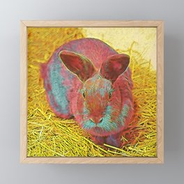 Popular Animals - Bunny Framed Mini Art Print