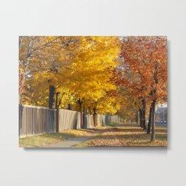 Autumn in Toronto. Metal Print