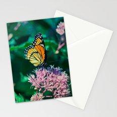 Viceroy Butterfly Stationery Cards