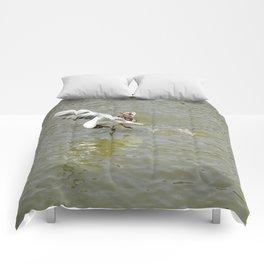 Bird Flexibility Comforters
