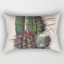 Vintage Cactus Print Rectangular Pillow
