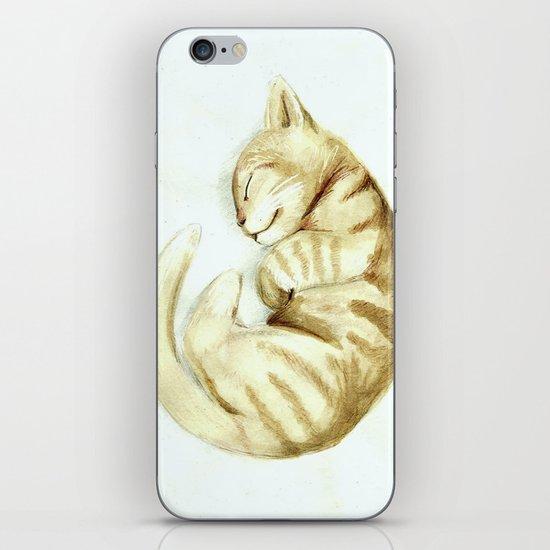Sleeping kitty iPhone & iPod Skin