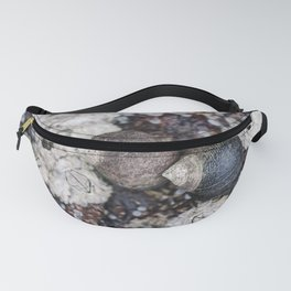 Periwinkles and Barnacles on a rock Fanny Pack
