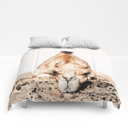 Camille the Camel Comforters