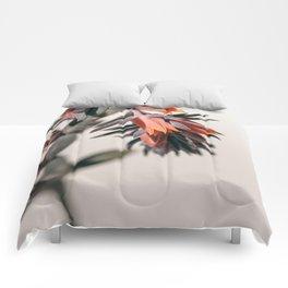 Summer Succulent #2 Comforters