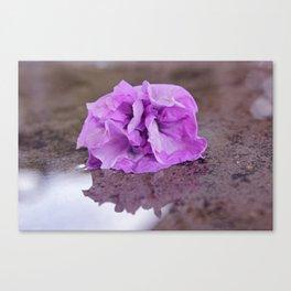 Flower reflection Canvas Print
