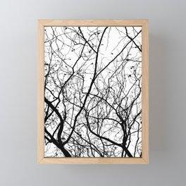 Branches Framed Mini Art Print