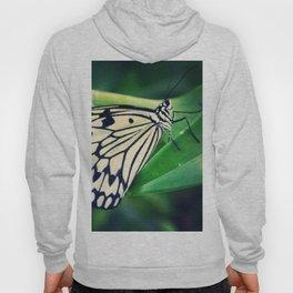 monarch Hoody