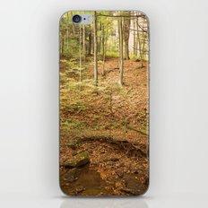 Life Is Uphill iPhone & iPod Skin